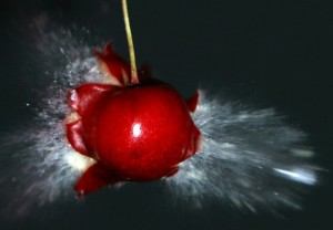 gte3643_exploding-cherry-wallpaper
